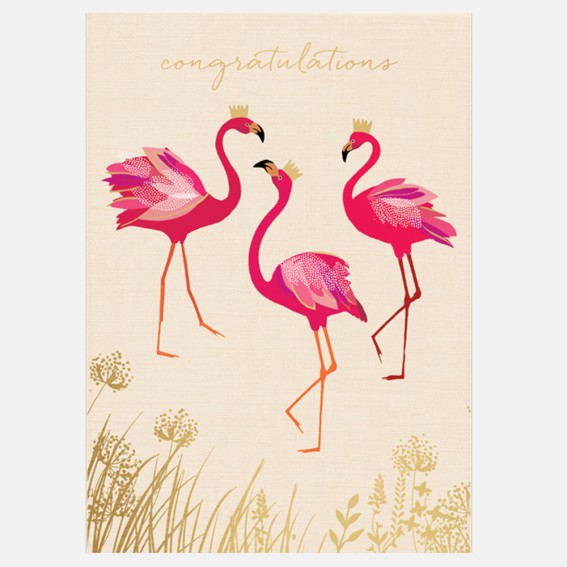 Cards, greeting cards, gift, luxury greeting card, animal card, celebration card, celebratory, well done, congratulations card, flamingo card,
